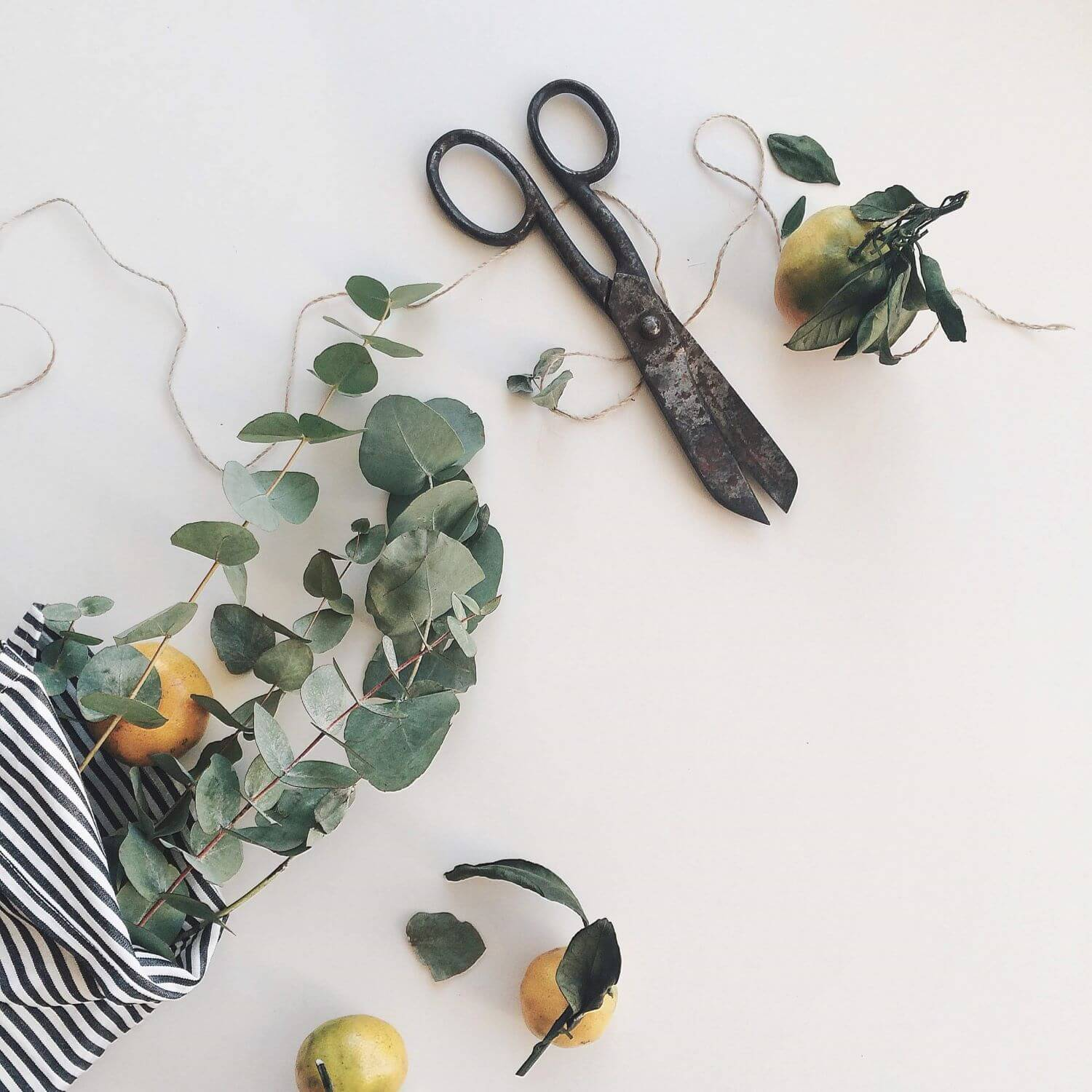DIY Blogs -by Emalyse the Naturopath